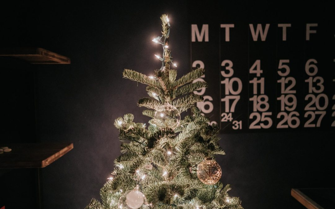 How I Decorate My Christmas Tree – Style & Senses Home