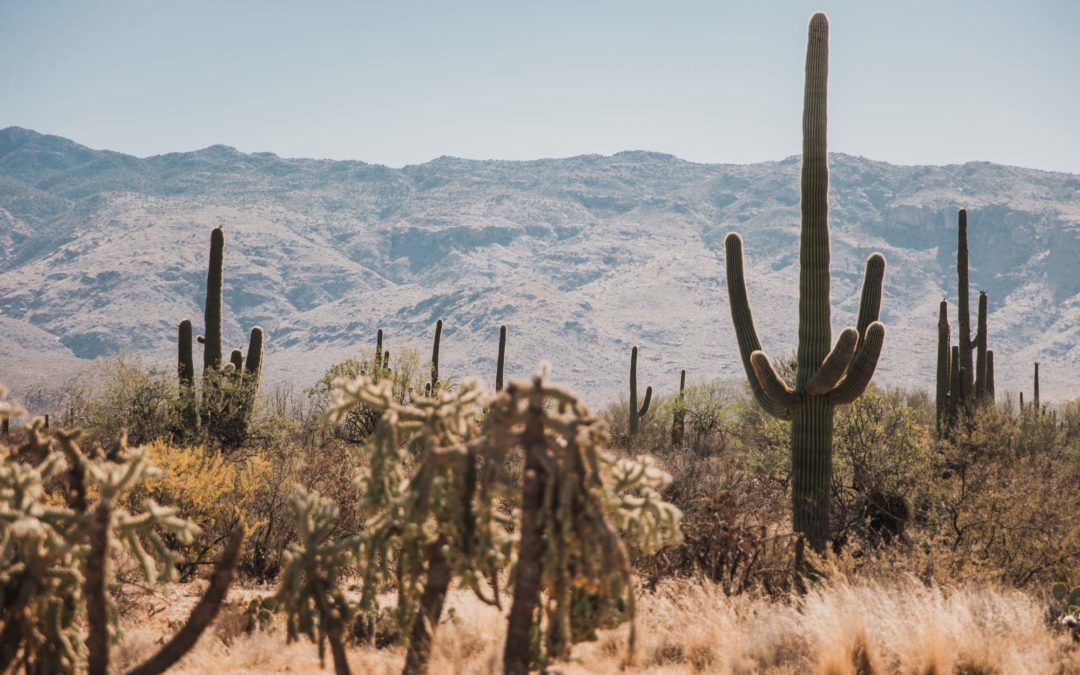 One Week American Southwest Road Trip Itinerary – Arizona & New Mexico